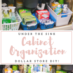 Under Kitchen Sink Organizer Long Light The Organization Diy By Lauren M Cabinet Dollar Store You Re Going To Love This