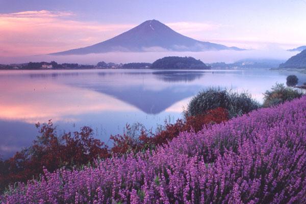 Kết quả hình ảnh cho Hồ Kawaguchi