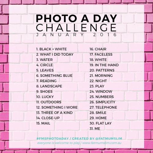 PHOTO-A-DAY-JAN-16