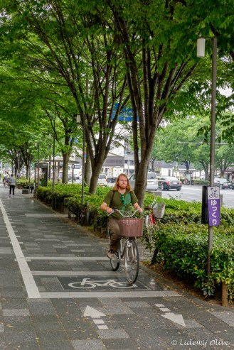 Cycling in Kyoto