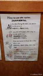 Sign: how to use the toilet