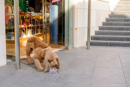 Plush dog in front of a shop