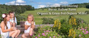 Byrne Hollow Farm header - Byrne Hollow Farm header