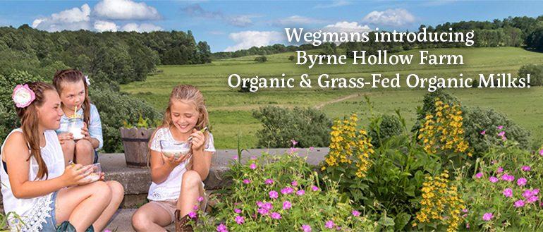Byrne Hollow Farm header - Byrne Hollow Farm
