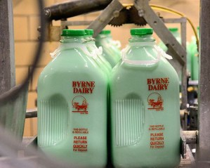 mint milk in ny for st patricks day made by byrne dairy