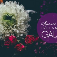 Spirit of Ireland Gala 2017! -- Updated
