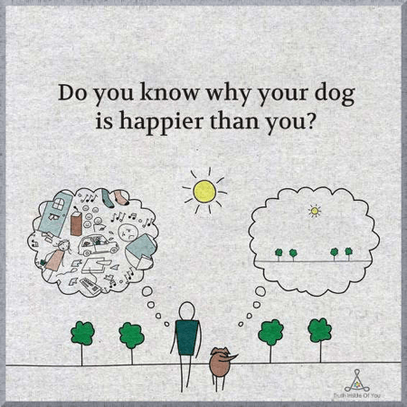 Do You Know Why Your Dog is Happier Than You? — Blog for