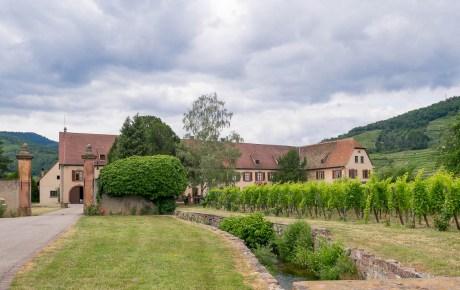 Deze wijnmakers in de Alsace zijn zeker een bezoek waard