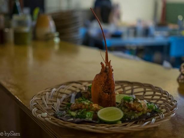 Mexicaans restaurant Amsterdam Noord taco's eten