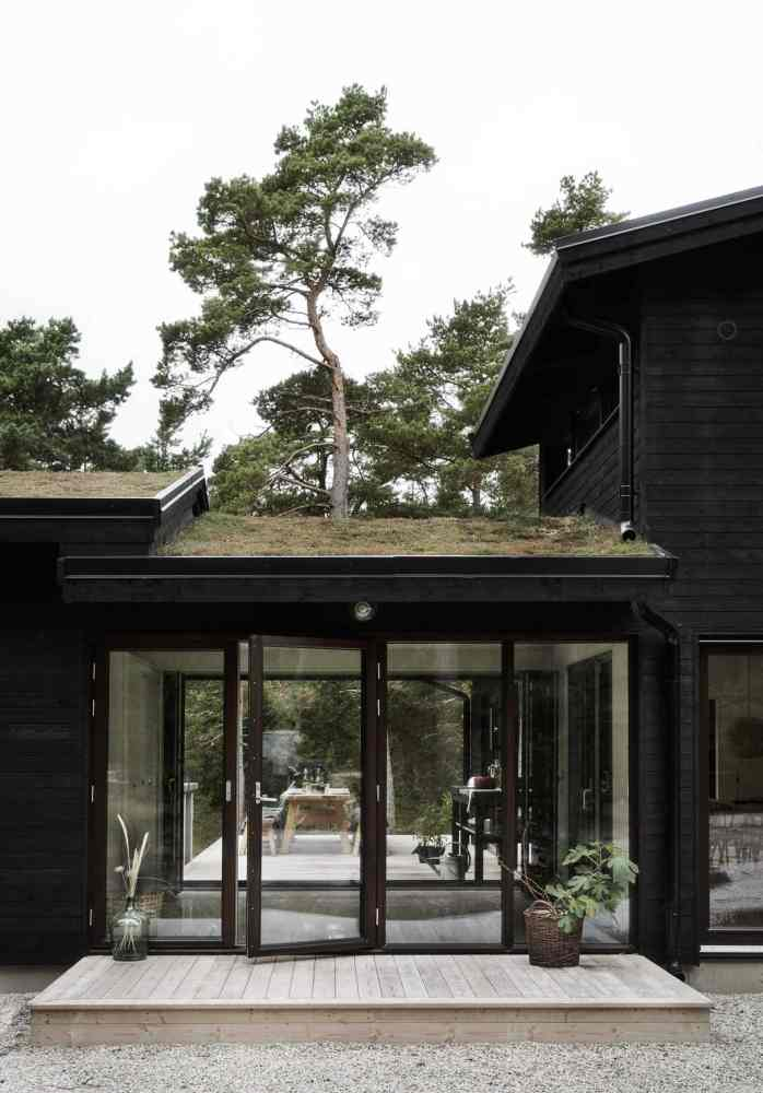 modern black house with living roof