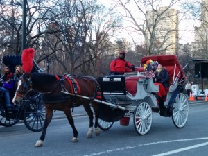 Classic Central Park carriage ride. I love the wonderment on their faces.