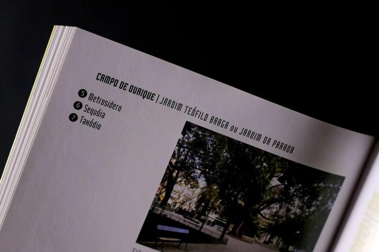 pormenor Arvores na Cidade