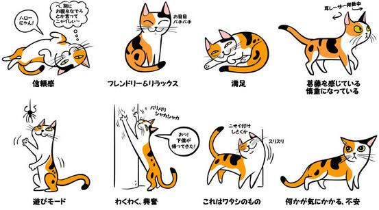 猫の感情表現しっぽ