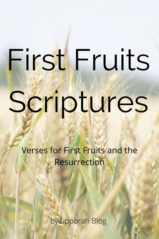 Scripture Reading for the Feast of First Fruits