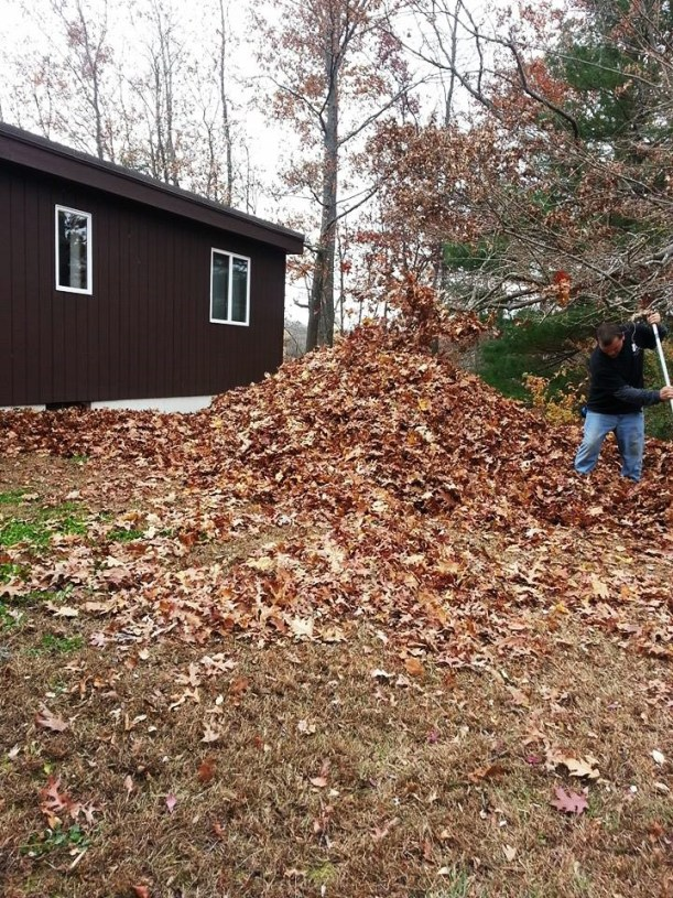What Do You Do With an Abundance of Fall Leaves?