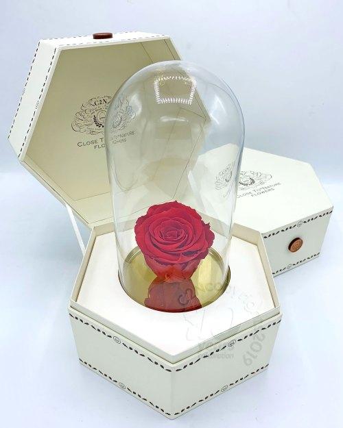 ดอกไม้เก็บได้ 5 ปี,ช่อดอกไม้ จัดดอกไม้ ส่งดอกไม้ สั่งดอกไม้ bangkok delivery flowers