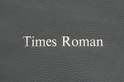 Times Roman - SILVER