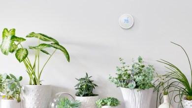 Photo of Nest Thermostat E : un modèle plus discret et plus abordable