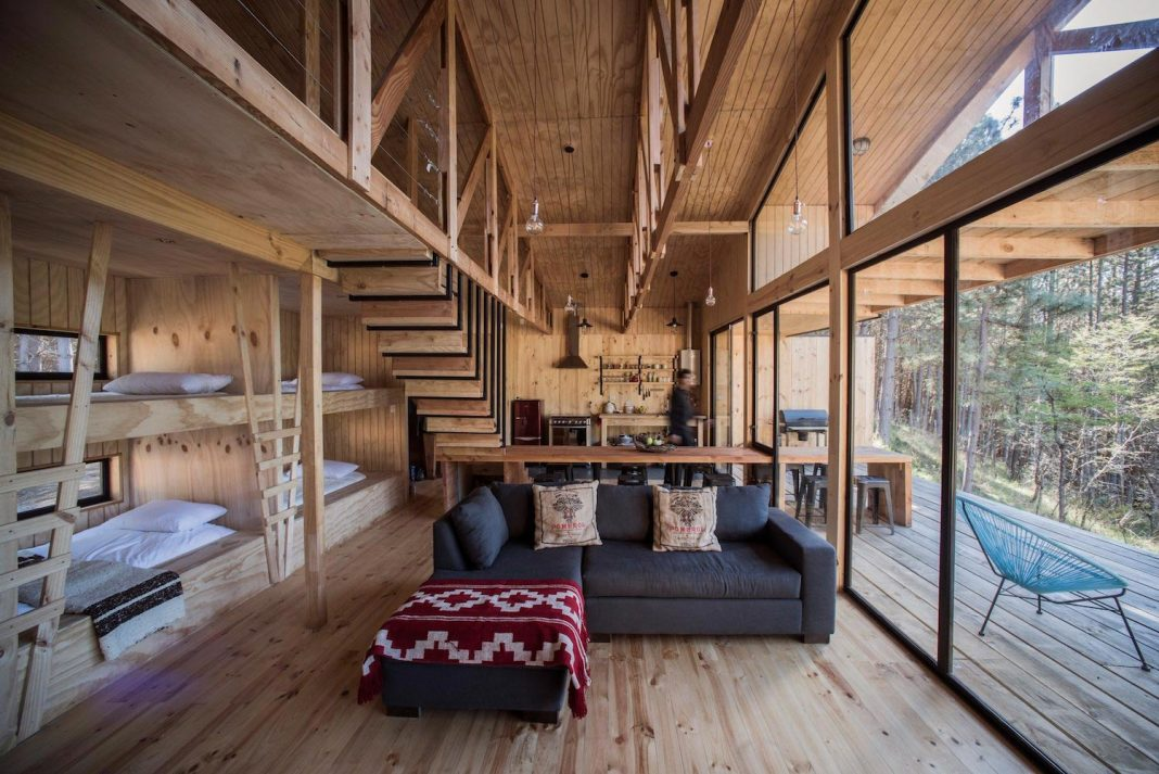 Simple pine wooden shed includes spacious living room and