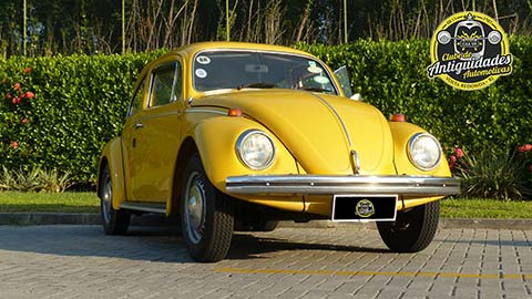 VW 1300L 1975 - Francisco Esteves