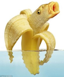 BEWARE THE BANANAFISH!
