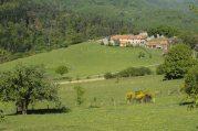 Le village de Moignoux
