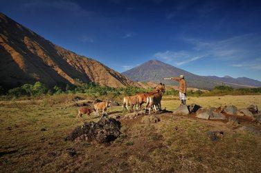 bukit-dandaun-cos-lombok