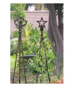 Plant Trellis