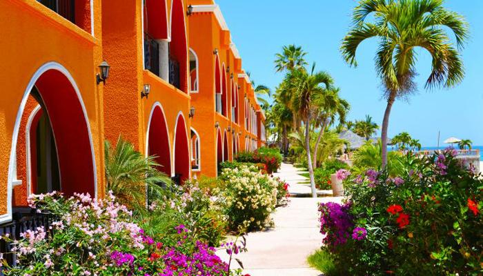 Hotel Palmas de Cortez Gardens