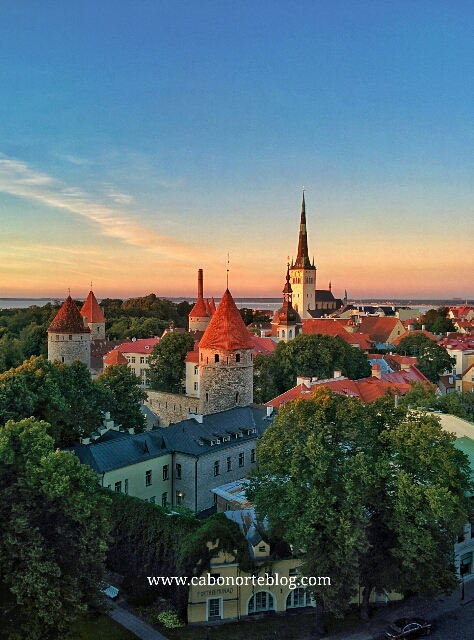 Tallin