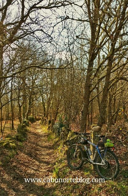 camino primitivo, camino de santiago, bici, galicia