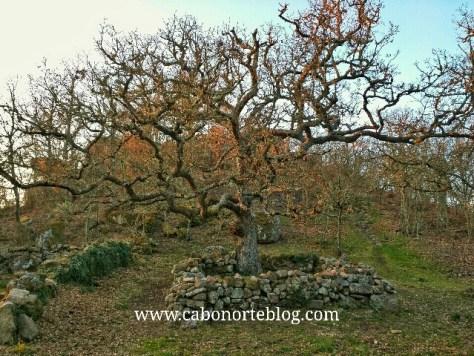 Augas santas, allariz, santa mariña, lendas, galiza, galicia, ourense