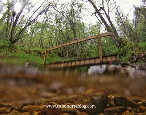 Río en Muniellos, asturias, gopro