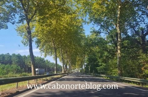 En las autovías francesas, el límite es de 110 km/h