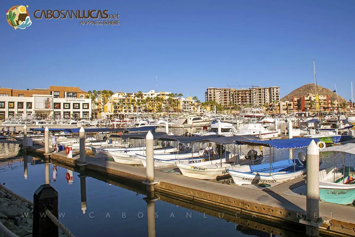 Cabo San Lucas un lugar nico