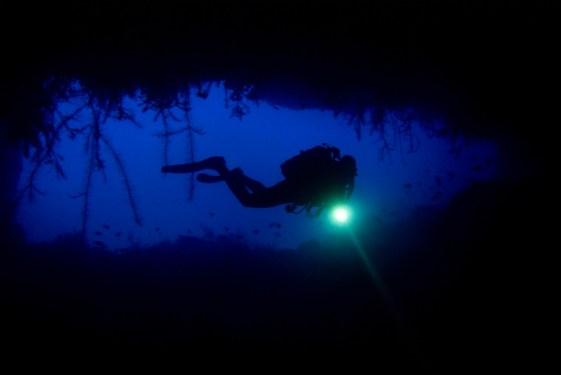 Dive sites langosta verde Cabo Verde9
