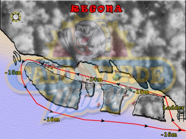 Regona