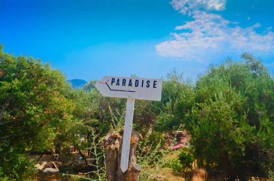 Paradis-1