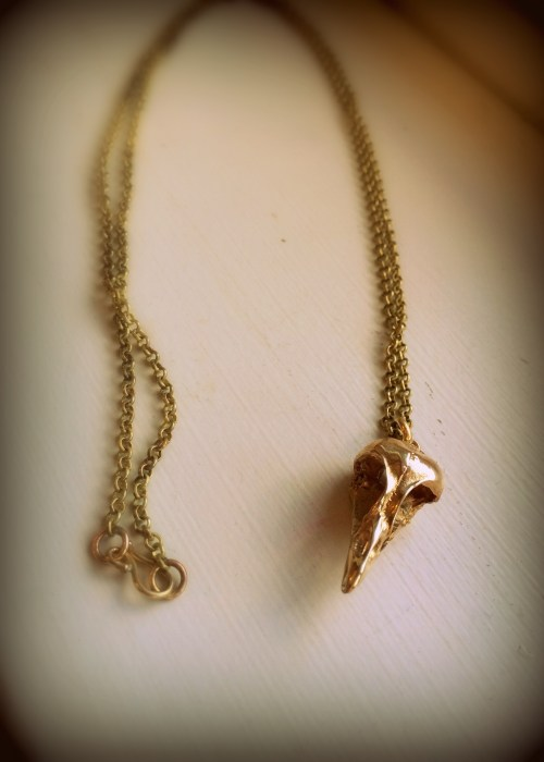 Bird Skull Necklace Cast in Bronze on Long Chain