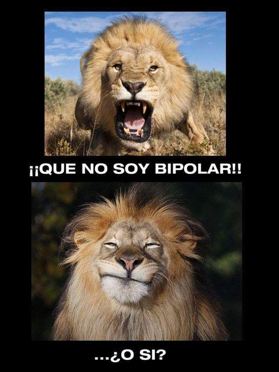 Yo no soy bipolar... o bueno, creo que si.