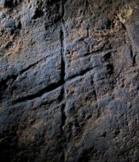 antropologia_neandertales