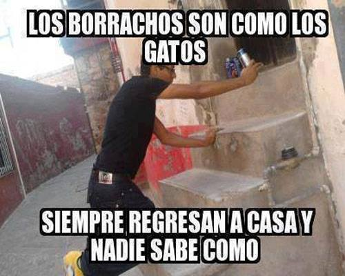 los-borrachos-son-como-gatos