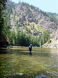 California Creeks  Selway River