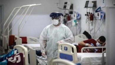 Photo of Se registraron 1.805 contagios en la provincia