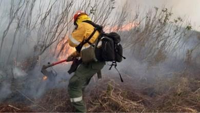 Photo of Estudian la creación de un comité con fuerzas de seguridad por los incendios