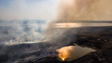 Photo of En enero ya se detectaron más de 1.100 focos de incendios en zona de islas