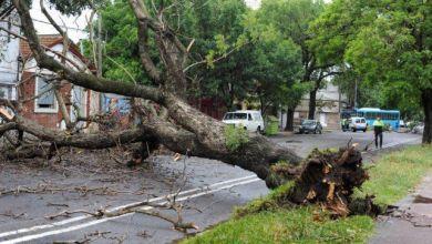 Photo of Las imágenes del fuerte temporal en Rosario