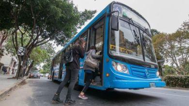Photo of Tras el retorno a clases, Rosario registró un récord en transporte de pasajeros