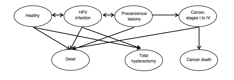 HPV Testing for Primary Cervical Cancer Screening