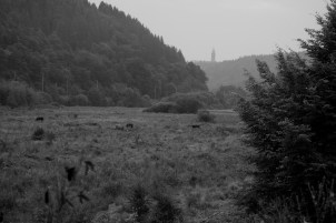 Escapardenne Eisleck Trail 1849